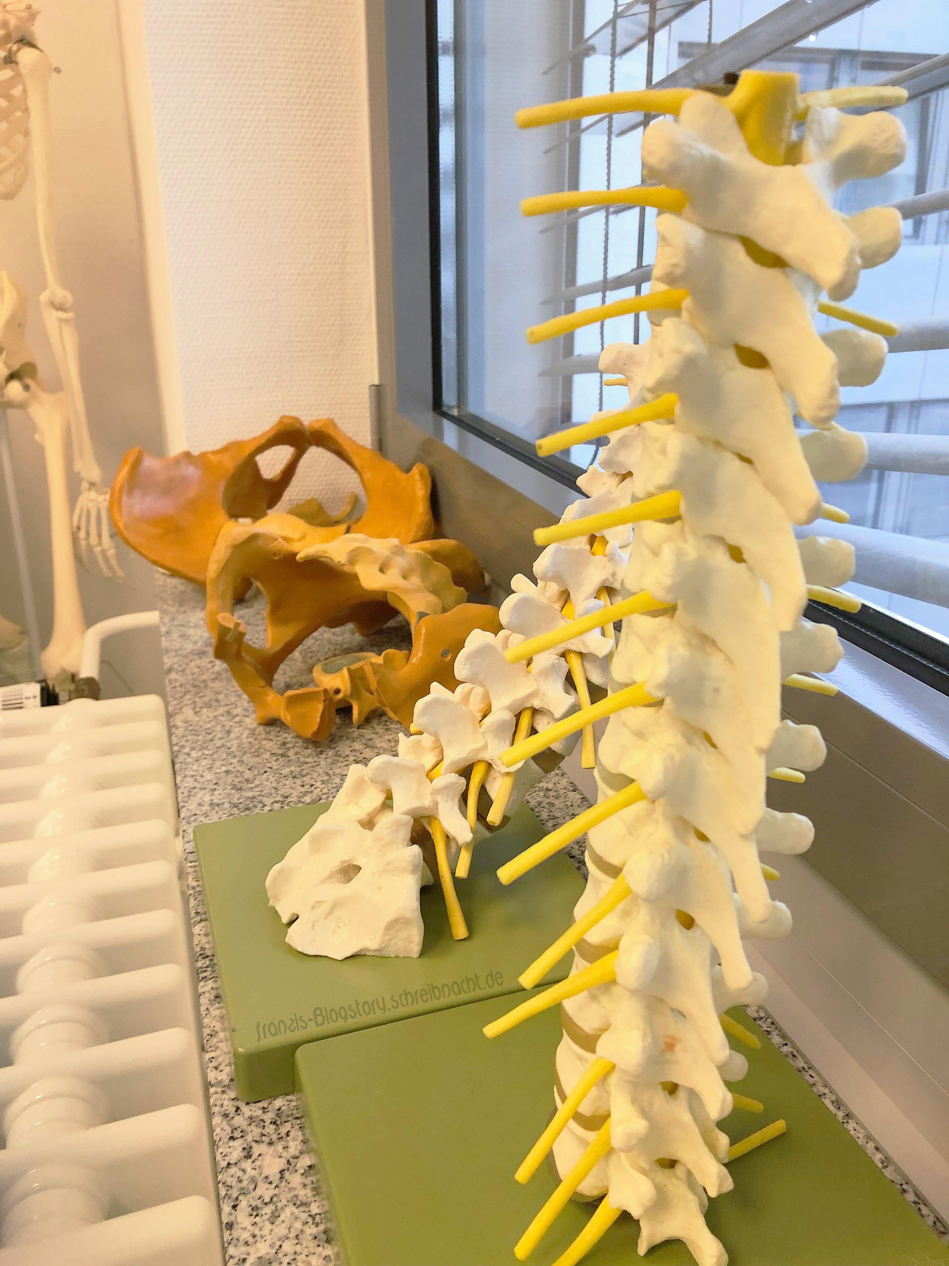 Unfallchirurgie/Orthopädie franzis-blogstory.schreibnacht.de